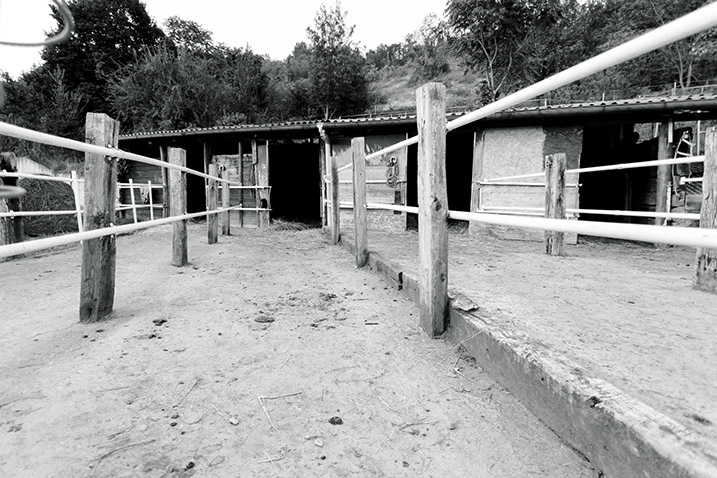 struttura_17