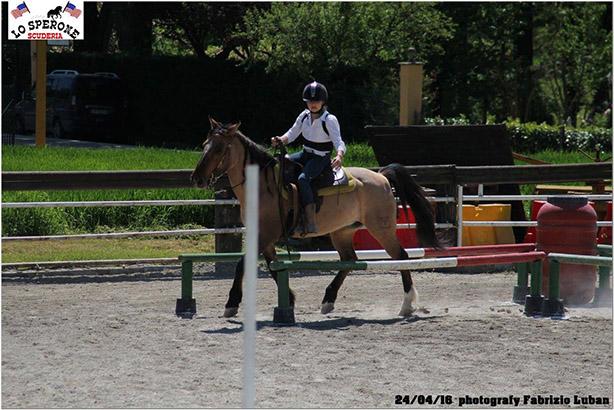 equitazione 10