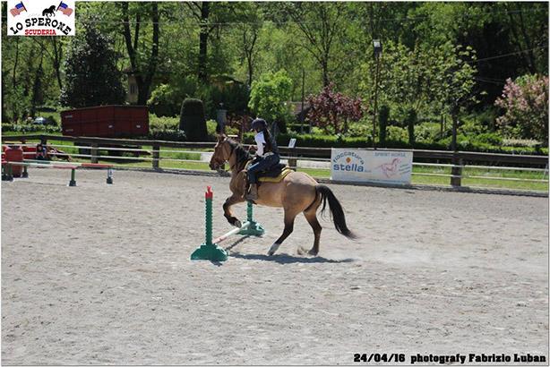 equitazione 11