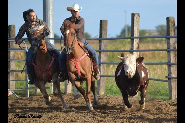 equitazione 22